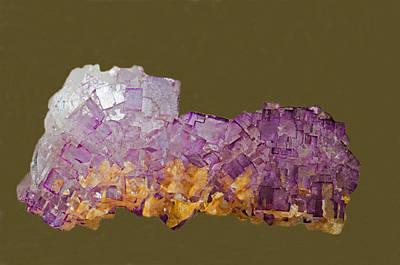 Photograph - Fluorite by Millard H Sharp