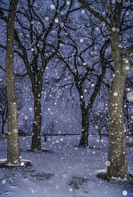Photograph - Flurries And Trees by Arkady Kunysz