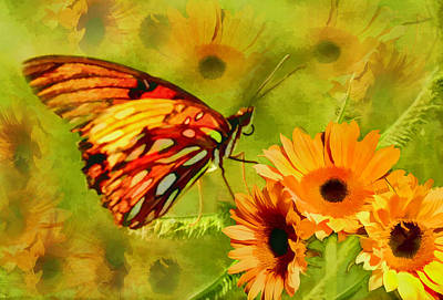 Photograph - Fluttering In Paradise by Grace Dillon