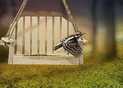 Downy Woodpecker Photograph - Fly Away Downy by Bill Tiepelman