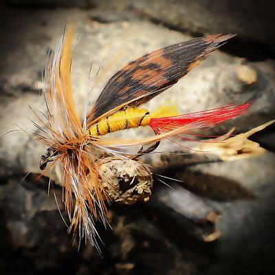 Photograph - Fly Fishing 2 by Jennifer Muller
