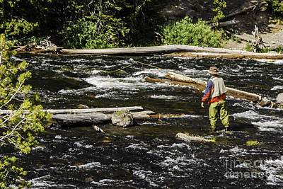 Photograph - Fly Fishing In Yellowstone by Mary Carol Story