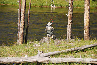 Photograph - Fly Fishing by Mary Carol Story