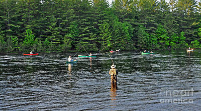 Photograph - Fly Fishing West Penobscot River Maine by Glenn Gordon