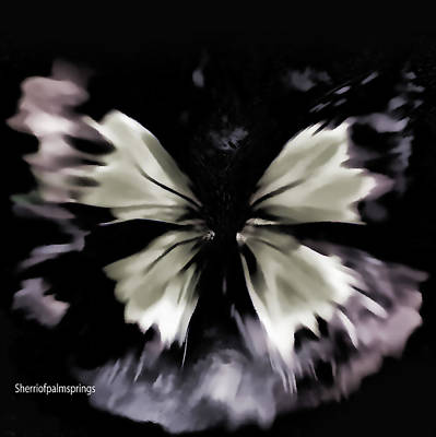 Ipad Design Photograph -  Butterfly Art  Fly Free Little Butterfly by Sherri's Of Palm Springs