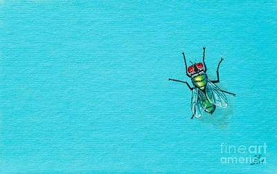 Fly On The Wall Art Print by Stefanie Forck