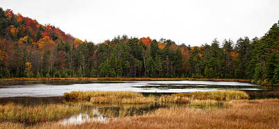 Photograph - Fly Pond In The Adirondack Mountains by David Patterson