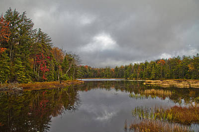 Fly Pond Near Old Forge New York Art Print by David Patterson