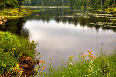 Photograph - Fly Pond - Rondaxe Road by David Patterson