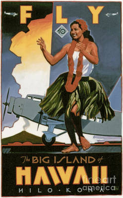 Fly To The Big Island Art Print
