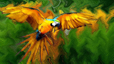 Flying 2 Art Print by Bruce Iorio