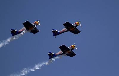 Photograph - Flying Bulls by Ramabhadran Thirupattur