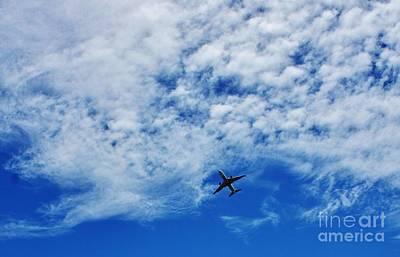 Flying Art Print by Craig Wood