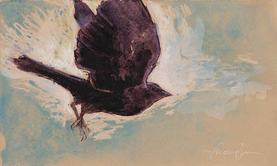 Flying Crow Original by Tracie Thompson