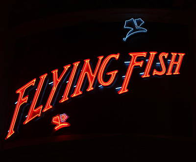 Photograph - Flying Fish by Denise Mazzocco