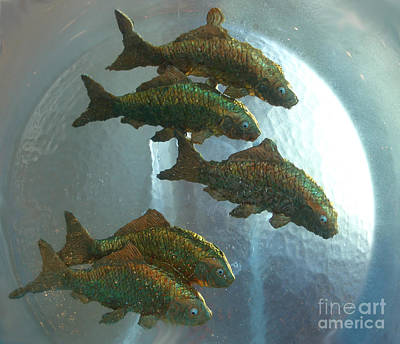 Photograph - Flying Fish by Nan Wright