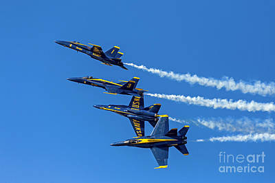 Photograph - Flying Formation by Kate Brown