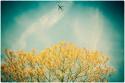 Photograph - Flying High by Lenny Carter