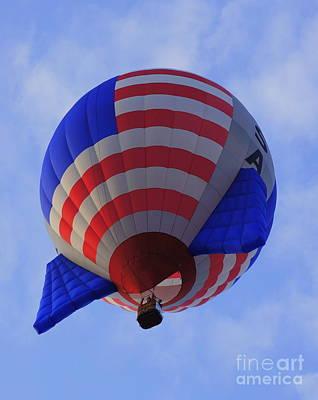 Photograph - Flying High by Rachel Munoz Striggow