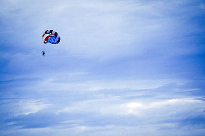 Photograph - Flying High by Ronda Broatch