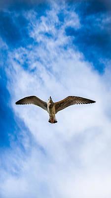 Baptizing Photograph - Flying High by Sotiris Filippou