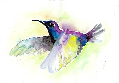 Nature Study Painting - Flying Hummingbird Watercolor by Tiberiu Soos