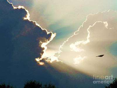 Photograph - Flying In Heavens Light by Judy Via-Wolff