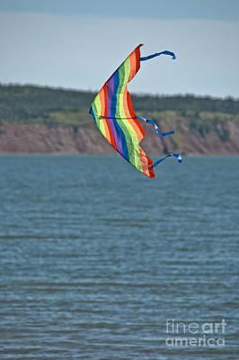 State Love Nancy Ingersoll - Flying Kite by Cheryl Baxter