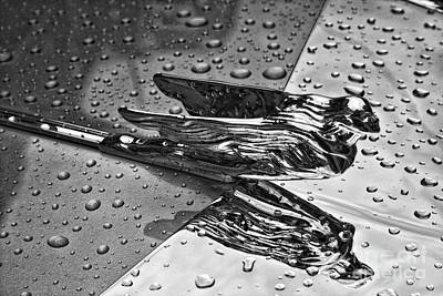 Photograph - Flying Lady Hood Ornament In B And W by Crystal Nederman