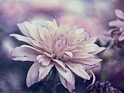 Purple Flowers Digital Art - Flying Over by Maria Angelica Maira