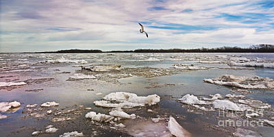 Flying Over The Ice Art Print
