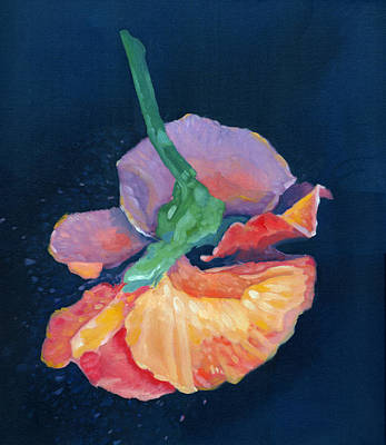 Painting - Flying Pansy by Katherine Miller