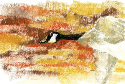 Flying Through A Canyon Art Print