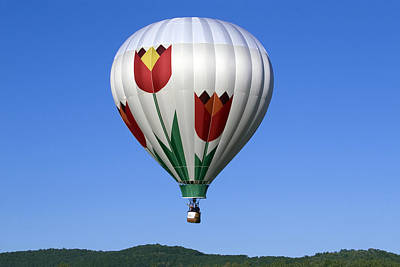 Photograph - Flying Tulip by Gene Walls