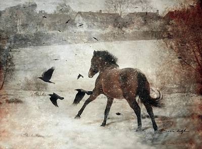 Winter Photograph - Flying With The Crows by Dorota Kudyba