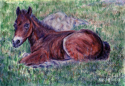 Lying Mixed Media - Foal And The Stone by Madeline Moore