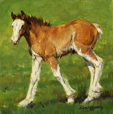 St. Louis Painting - Clydesdale Foal by Don  Langeneckert