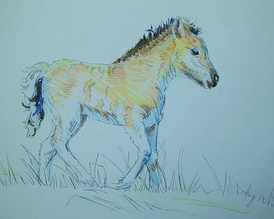 Drawing - Foal by Mike Jory