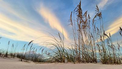 Photograph - Focus On Destin by JC Findley
