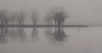 Photograph - Fog And Fishing Eagle by Deborah Smith