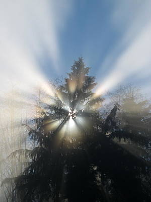 Photograph - Fog And Light Rays by Brian Chase