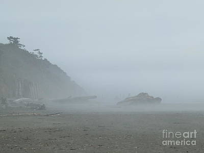 Photograph - Fog At The Beach by Terri Thompson