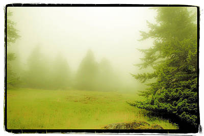Art Print featuring the photograph Fog Bank by Craig Perry-Ollila