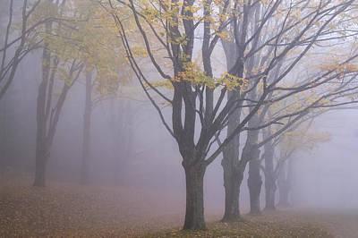 Photograph - Fog Bound Fall 01 by Jim Dollar