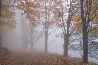 Photograph - Fog Bound Fall 02 by Jim Dollar