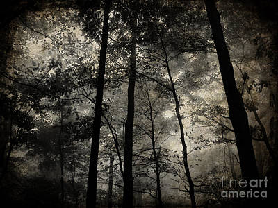 Fog In The Forest Art Print by Lorraine Heath