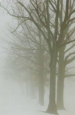 Photograph - Fog by Karin Thue