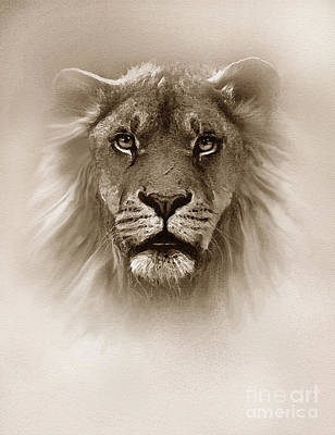 Black And White Cat Digital Art - Fog King Lion by Robert Foster