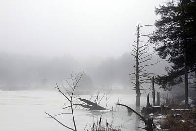 Fog On The Beaver Pond Art Print by David Simons