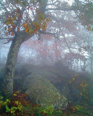 Fog On The Blue Ridge Art Print by Helen Roach